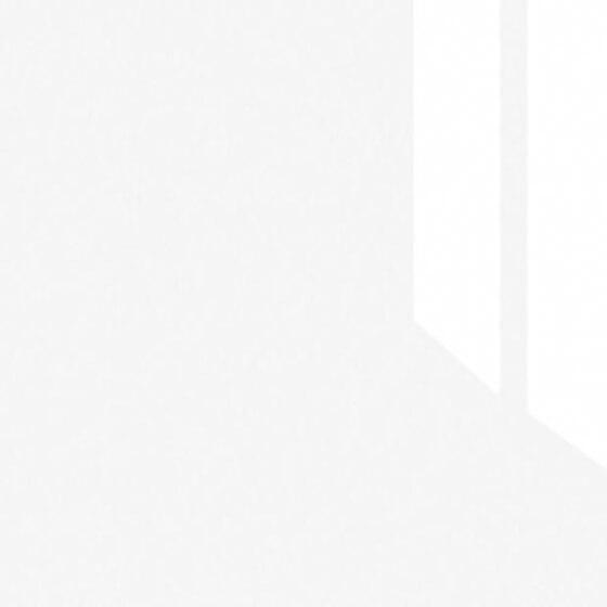 Белоснежный глянец DM101-6Т