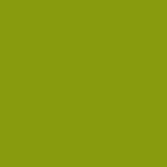 Олива глянец D7073-001