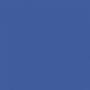 Сизый глянец 1705-1