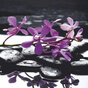 Купон мебельный Orchideya 19