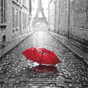 Купон мебельный Paris 65