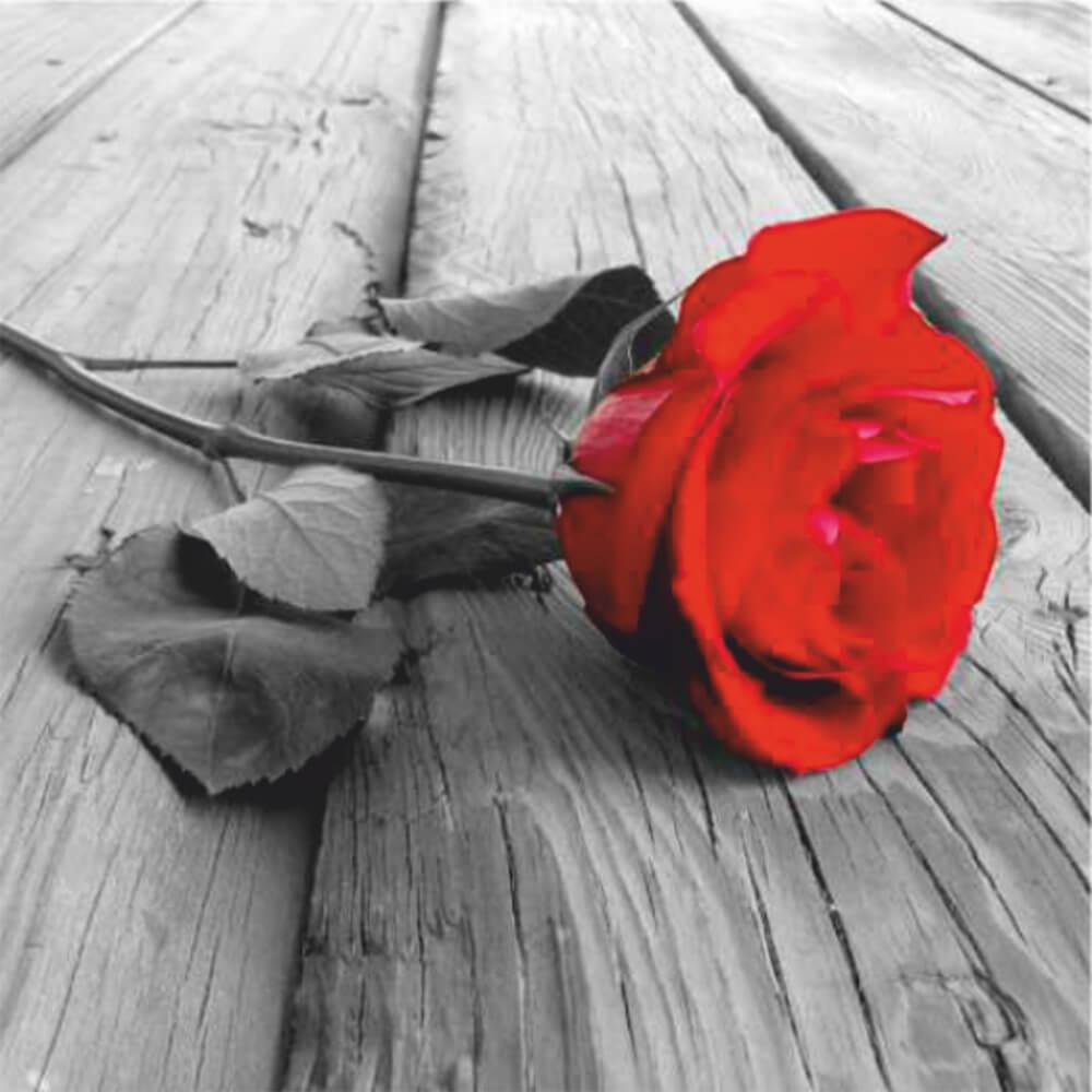 Купон мебельный Romantik 11